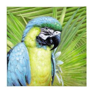 toile perroquet