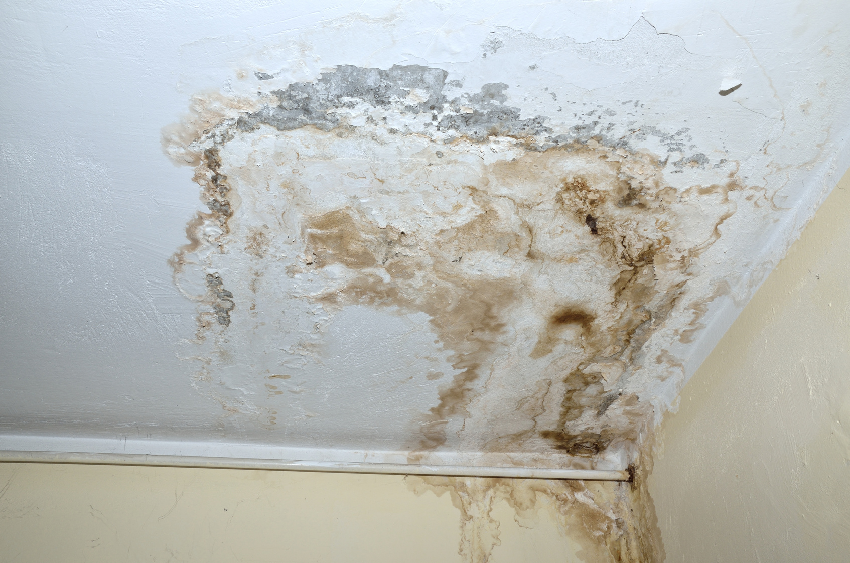 Mold on white ceiling and heat pipe